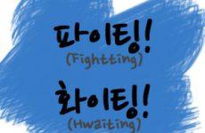 Файтинг в Корее вовсе не к драке