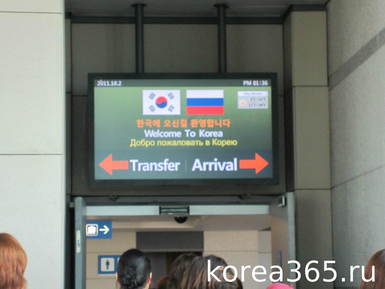декларация в аэропорту образец