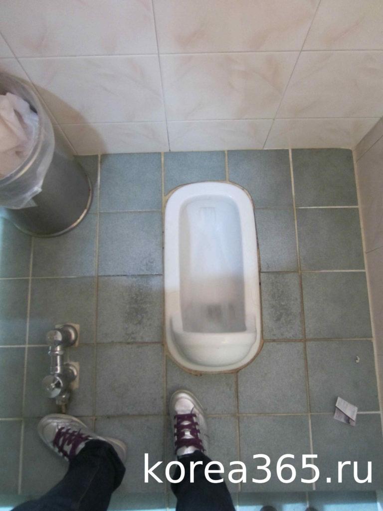 Южная Корея туалет чаша генуи