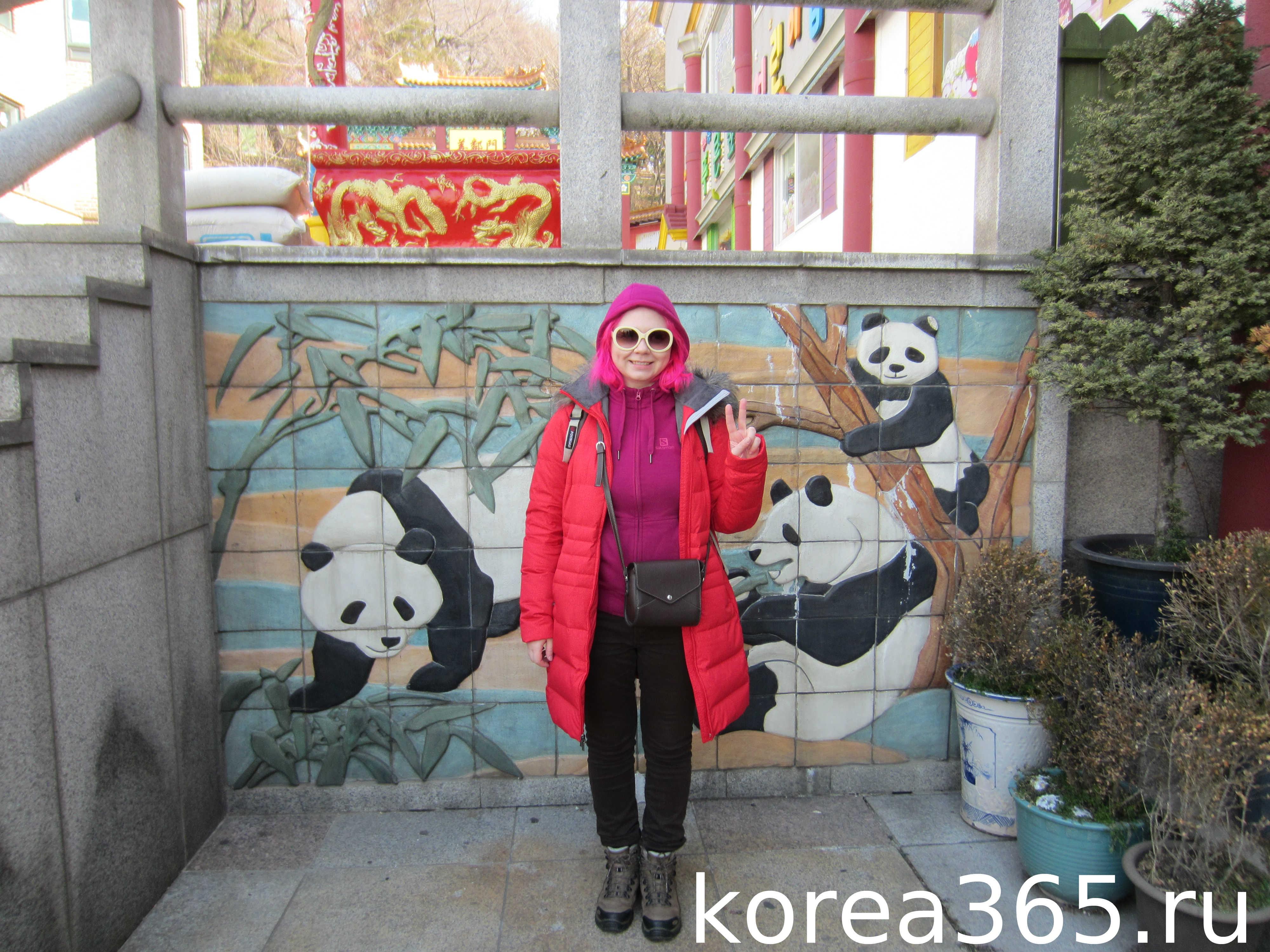 с пандами